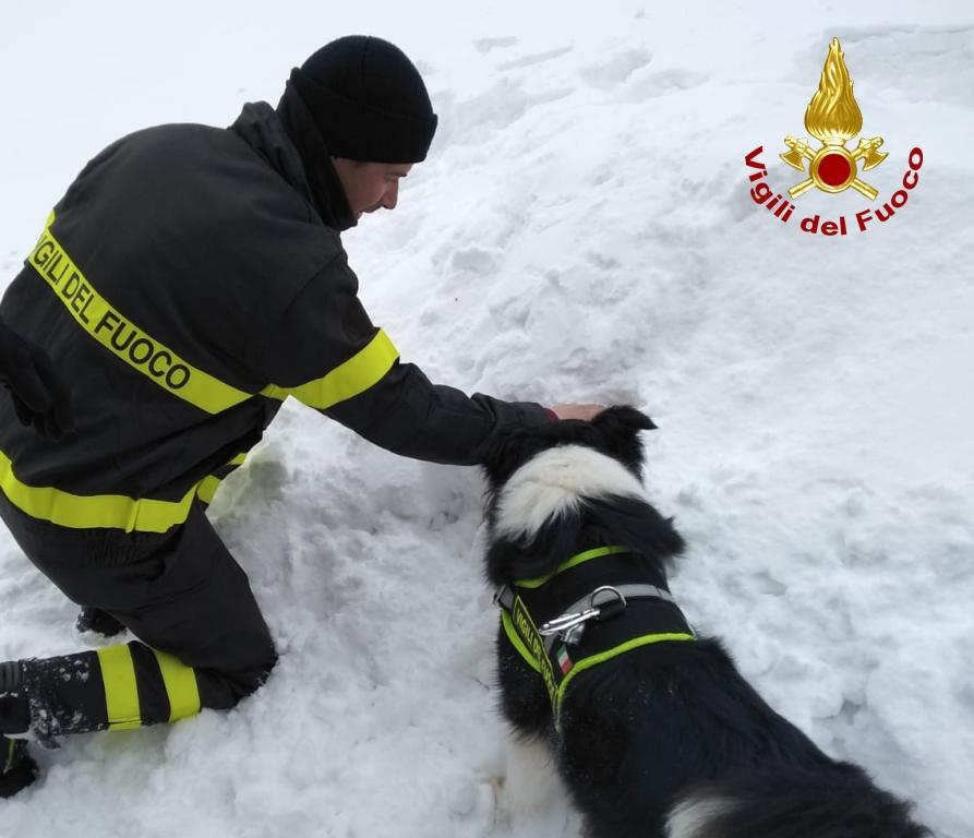 Ricerca e salvataggio di persone sepolte sotto la neve, esercitazione all'Abetone
