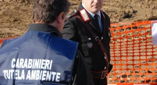 Controlli dei carabinieri del Noe in Versilia e lucchesia