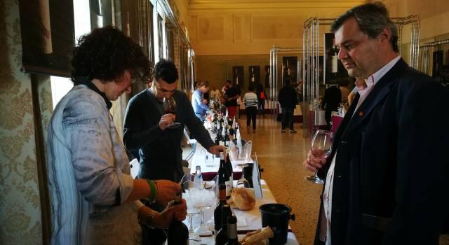 È di nuovo Anteprima Vini della Costa Toscana. Tante novità per l'edizione 2019