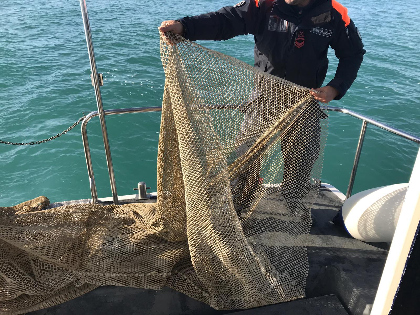 """Arcipelago pulito, Baccelli (Pd): """"Da Viareggio la flotta di pescherecci più grossa"""" - Versiliatoday.it"""