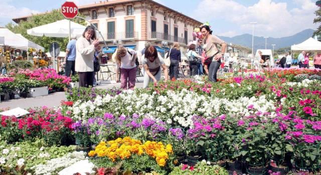 Eventi: 1 maggio con Marina in Fiore, a Tonfano è sbocciata la primavera