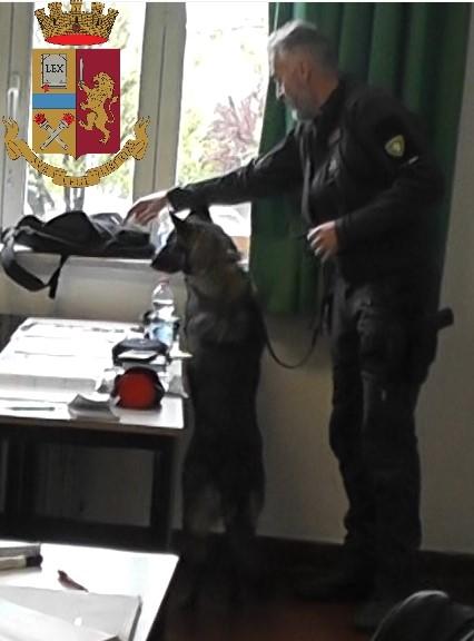 Il poliziotto a 4 zampe Mia trova la droga a scuola