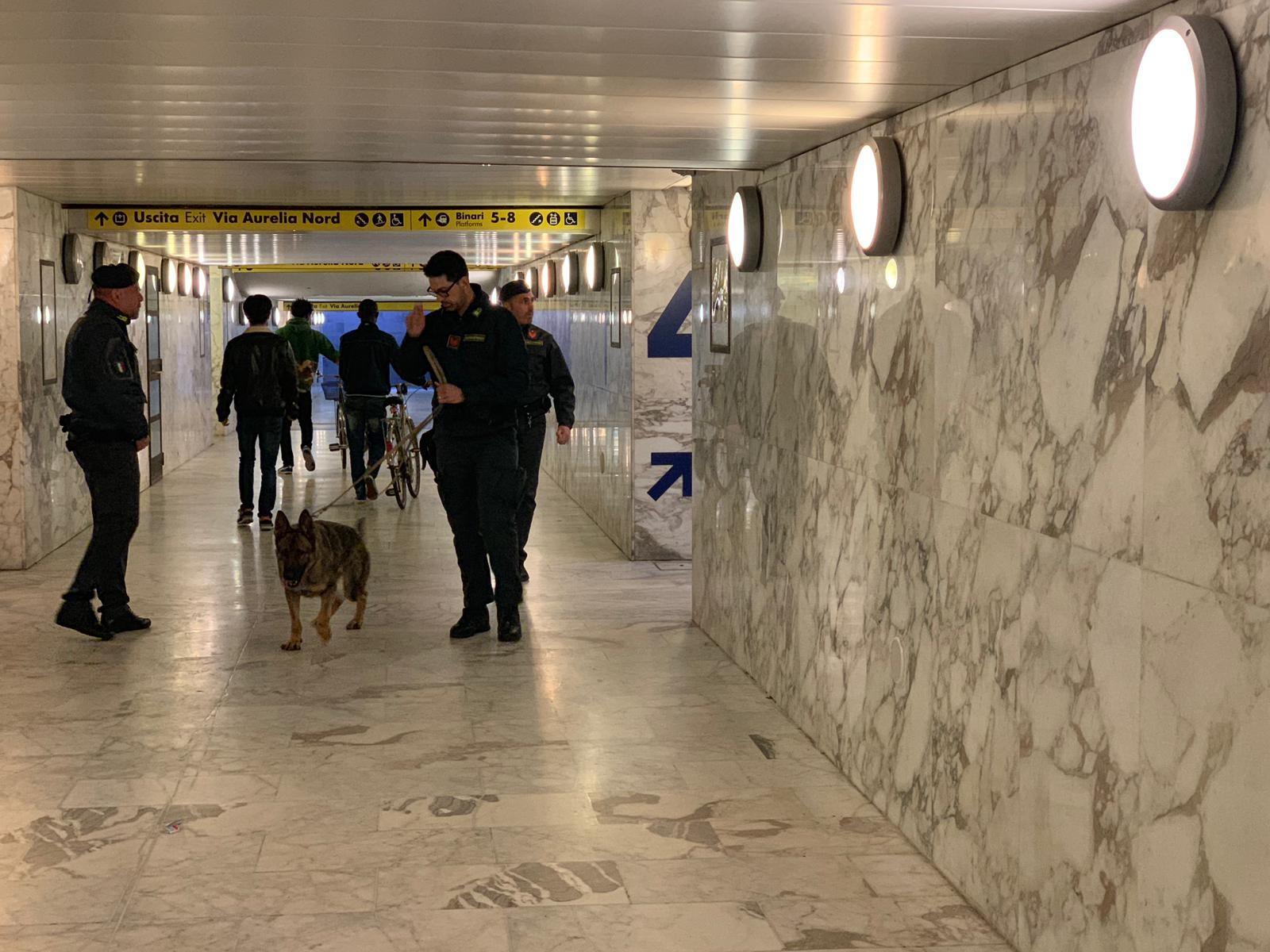 Droga, controllo con i cani in stazione e passeggiata