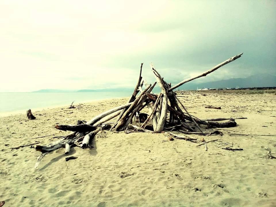 Spiagge del Parco, un marchio per il turismo sostenibile
