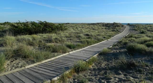 Spiagge pulite e non solo: cartelli per sensibilizzare chi frequenta il Parco e la Lecciona