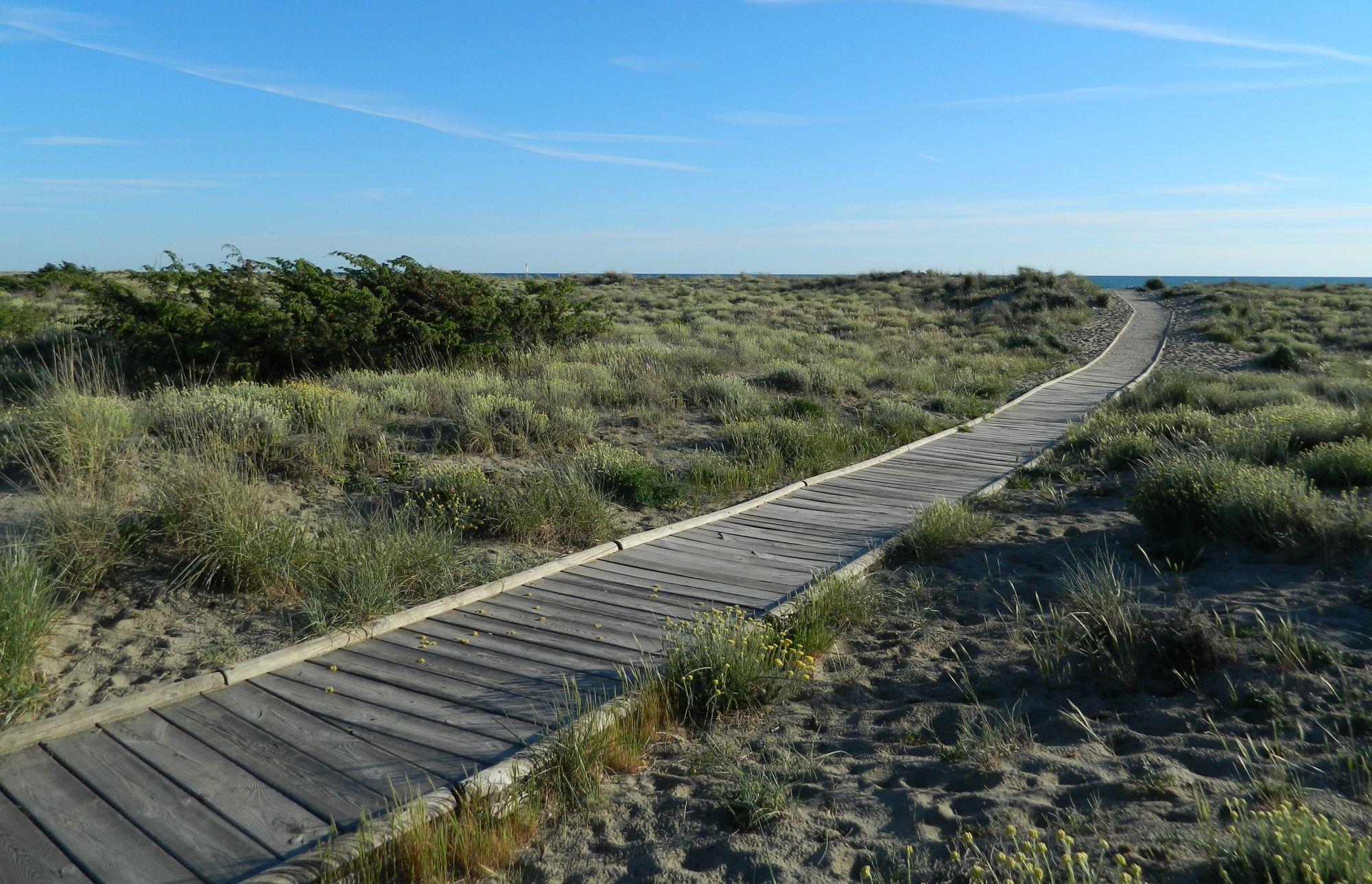 Ciclovia tra le dune: la risposta di Legambiente