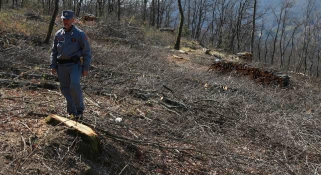 Rifiuti, colto sul fatto dai Forestali a scaricare terre e rocce da scavo