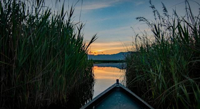 """Rosaria Sommariva (Orgoglio Toscana): """"Lago di Massaciuccoli, una risorsa per il nostro territorio"""""""