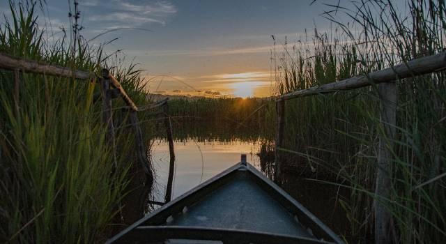 """Massaciuccoli, approvata in Regione la mozione della Lega: """"Occorre monitorare le acque del lago"""""""