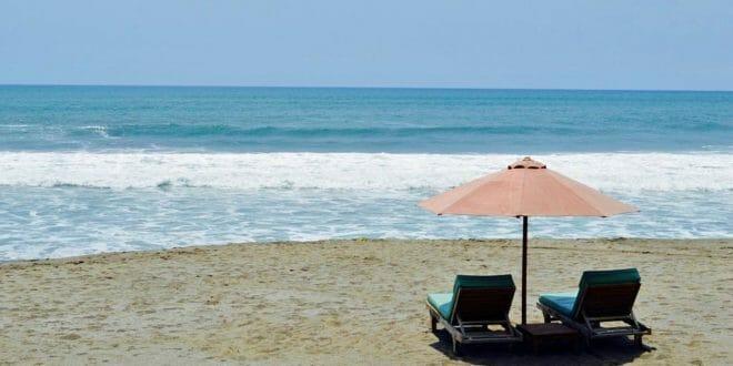 Nudi in spiaggia con il cane? Si rischia la doppia multa!