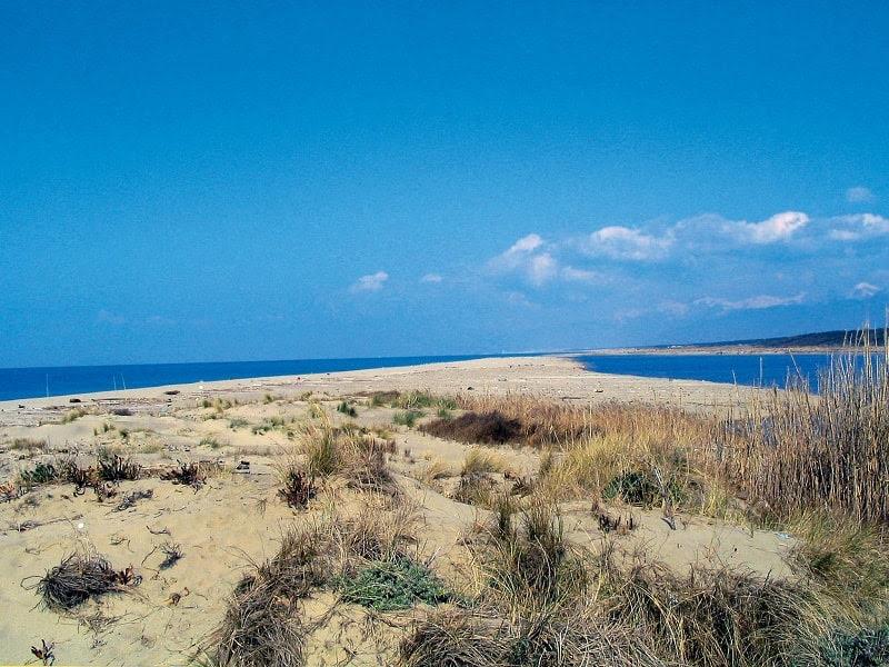 Pulizia della penisola dei gabbiani: a Bocca di Serchio per aiutare l'ambiente, come partecipare