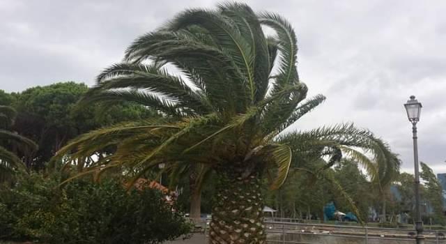 Finita la pioggia, ora è codice giallo per il vento grecale