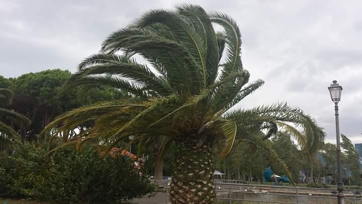Maltempo, codice giallo per vento da stasera a tutto domani, mercoledì 29 aprile