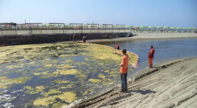 Batteri fecali, divieto di balneazione a Viareggio, Lido di Camaiore e Fiumetto