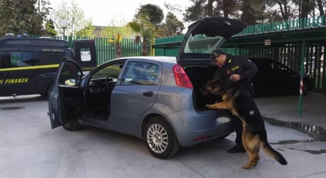 Arrestato dalle Fiamme Gialle viareggine a Pietrasanta, aveva 150 grammi di cocaina