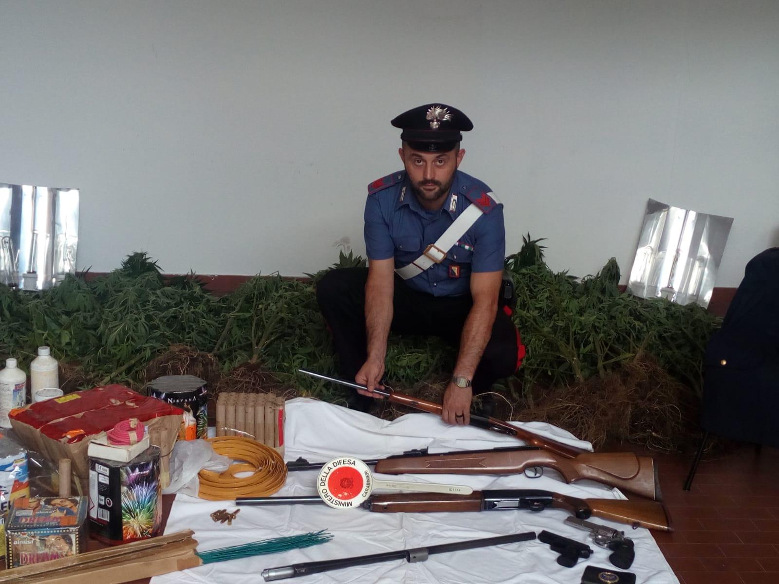 """Coltivazioni di """"cannabis sativa"""", 3 arresti"""