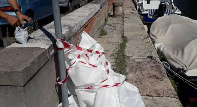 Legato al guinzaglio e a un secchio pieno di cemento: orrore nel canale Burlamacca