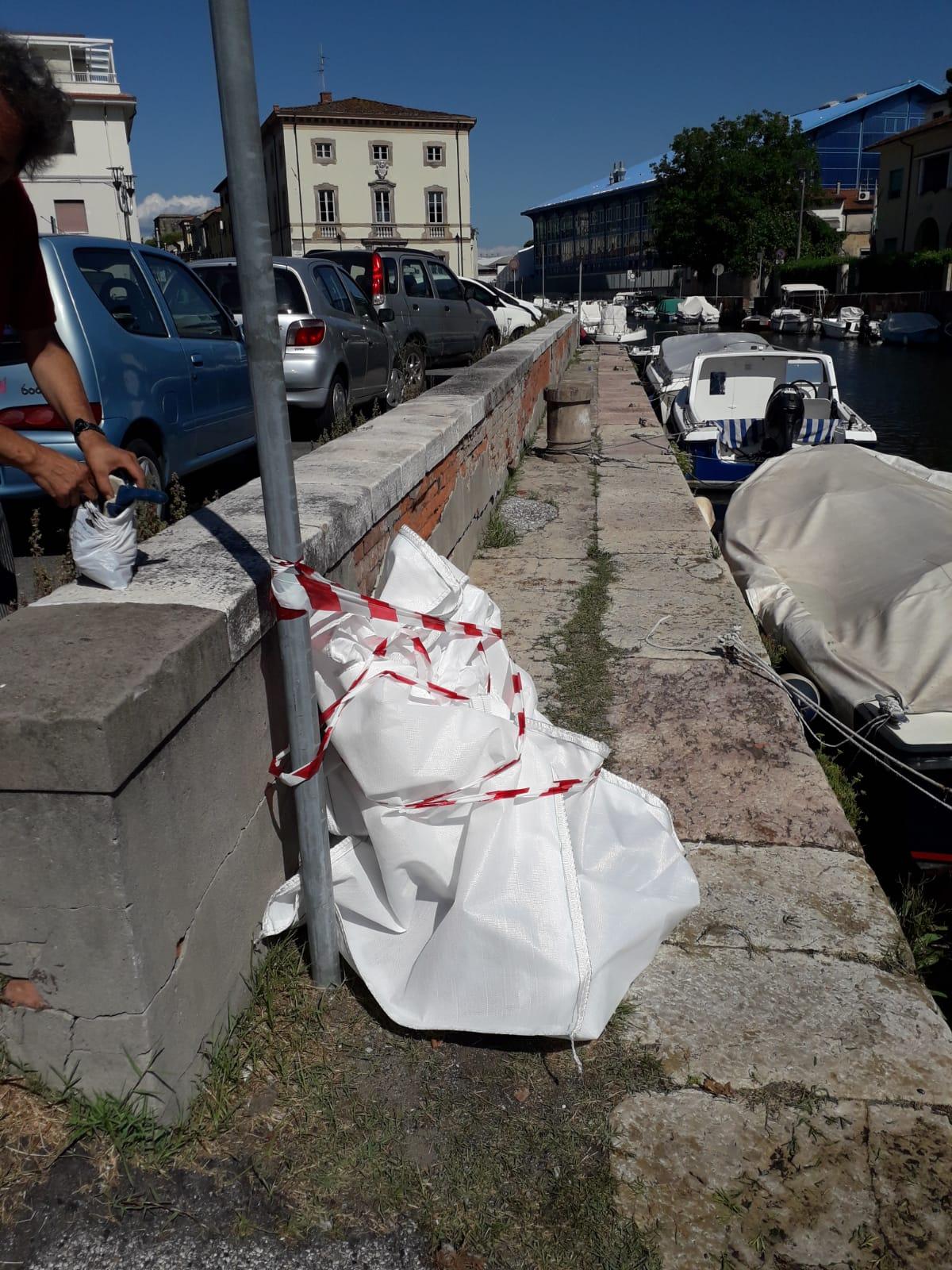 Cane morto nel Burlamacca, si muove anche Gaia Lex e l'avvocato Stefania Vecoli
