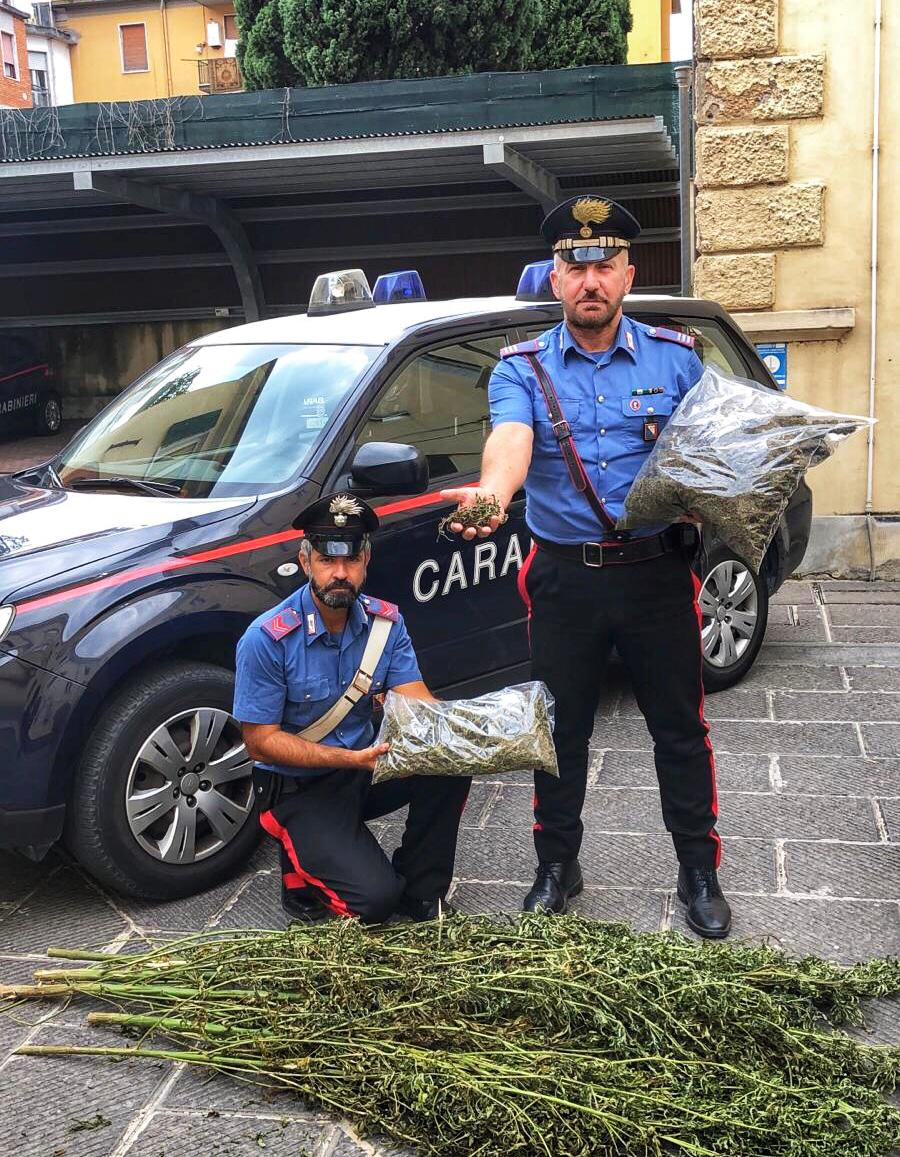 Pubblicizza on line la vendita di cannabis, arrestato