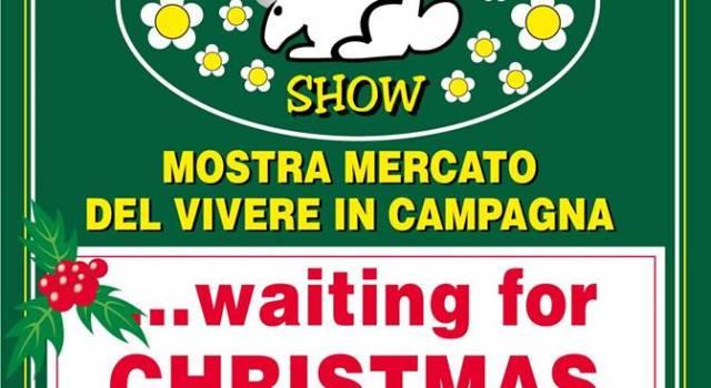 In Versiliana è già Natale