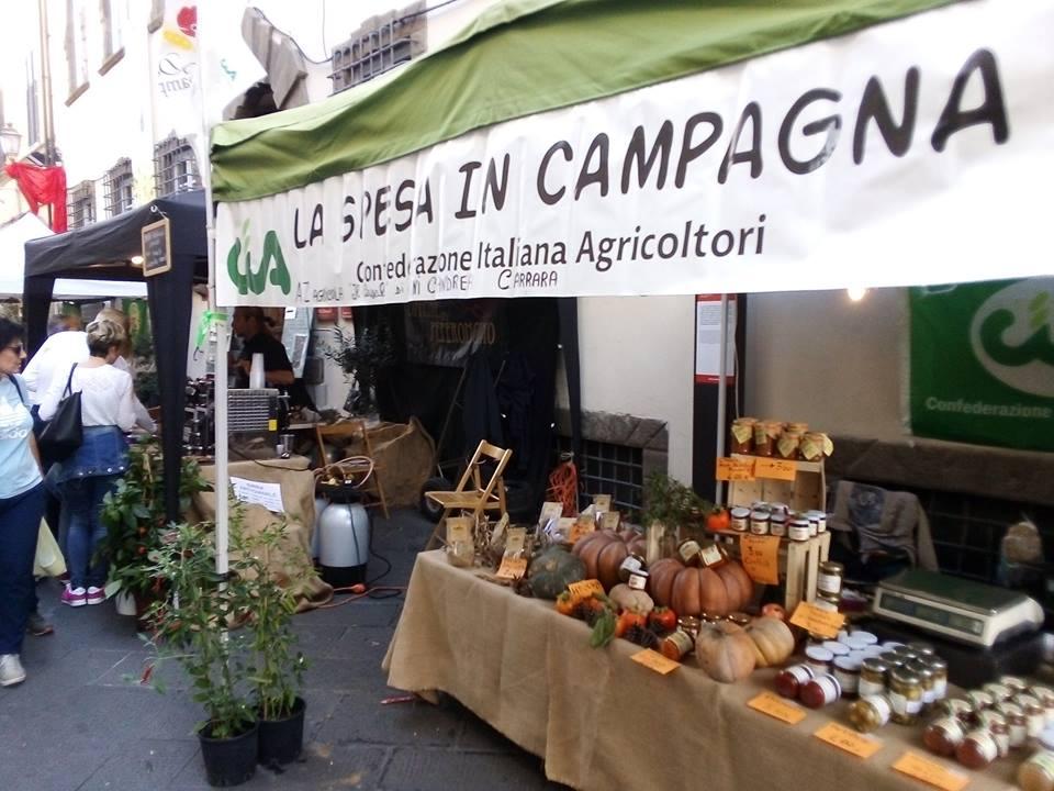 """Mercato contadino alle """"Stelle di Pietrasanta"""""""