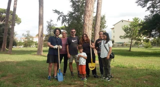Dopo la manifestazione per il clima piantati nuovi alberi a Viareggio