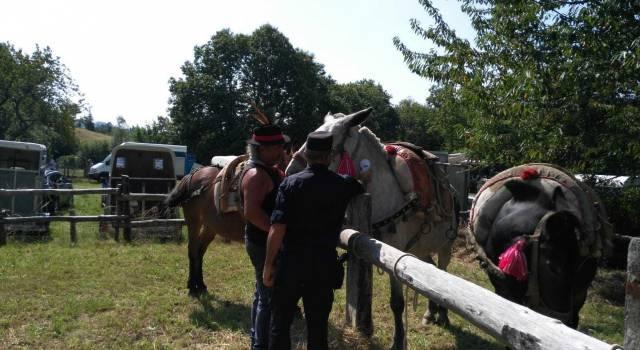 I carabinieri controllano gli animali nelle fiere folcloristiche