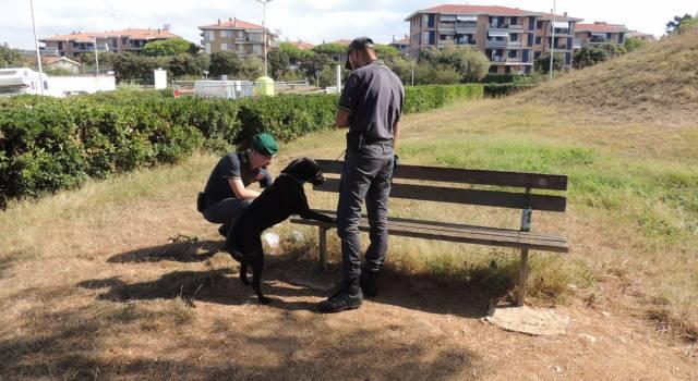 Centrale dello spaccio scovata a Livorno, 3 in manette: uno è minorenne