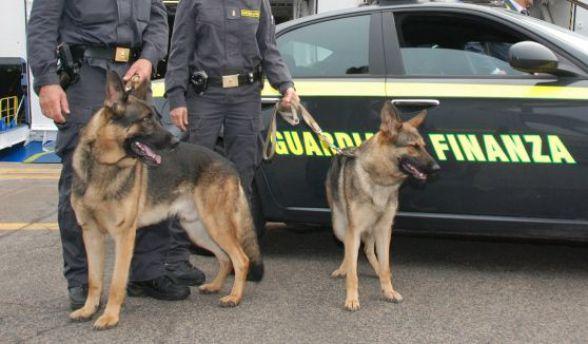 La GdF con il cane anti-droga setaccia la Garfagnana nel week-end