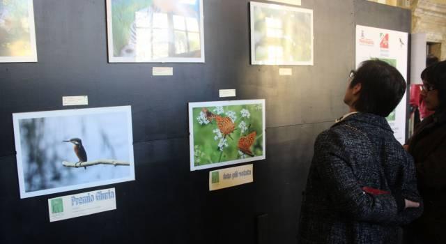 Arte: Natura in mostra con la Uildm, 40 scatti per concorso Andrea Pierotti