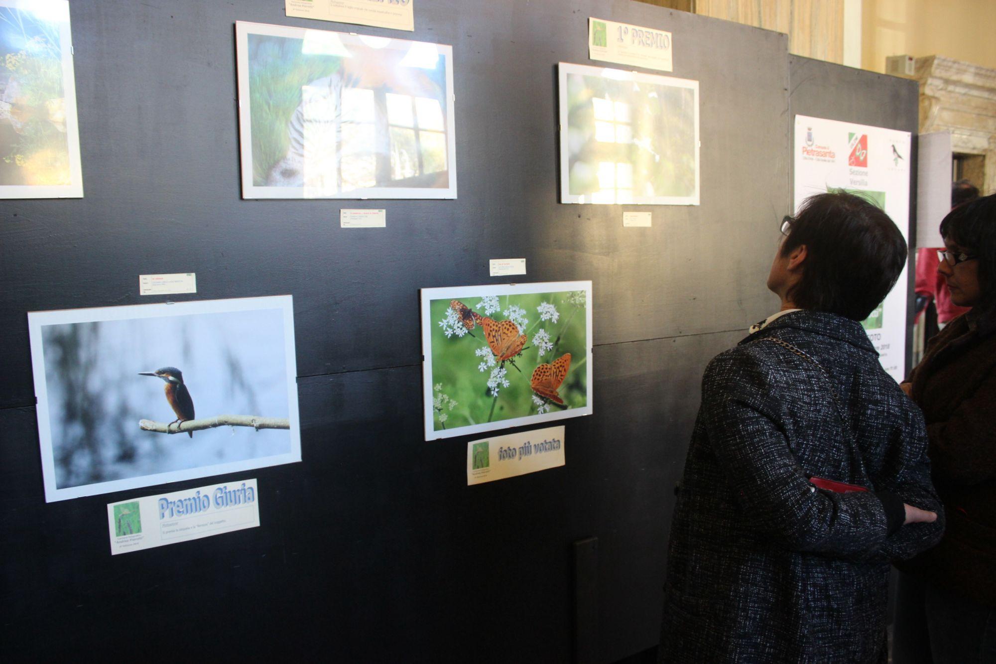 Natura in mostra con la Uildm, 40 scatti per il concorso Andrea Pierotti