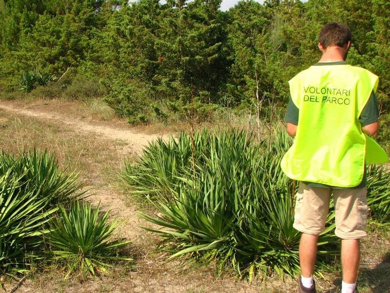 Volontari per l'ambiente: l'Ente Parco Migliarino San Rossore Massaciuccoli ha avviato la selezione di dieci guardie
