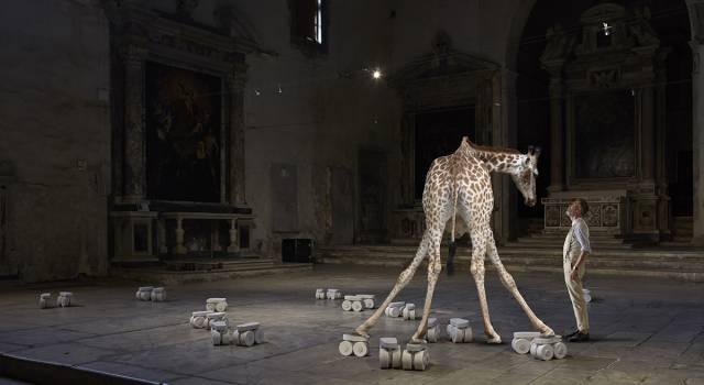 12mila visitatori per Erratico, la mostra di Herreman-Cavenago prorogata fino al 1 marzo