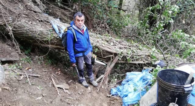 Albero caduto sul sentiero 7, tratto Cardoso Collemezzana