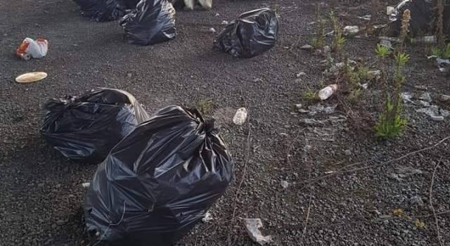 """Fare Verde Versilia segnala discarica abusiva nella zona """"ex mercato dei fiori"""""""