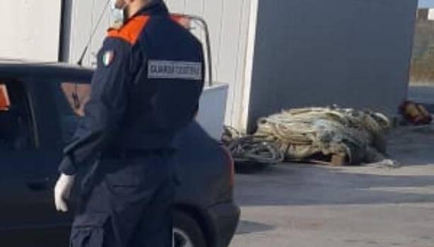 Col cane in spiaggia e in mare con la canoa: a Viareggio scattano le sanzioni della Guardia Costiera