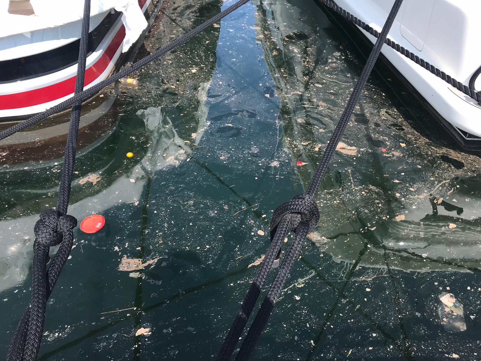 Chiazza oleosa in porto a Viareggio, ancora non chiara l'origine dello sversamento