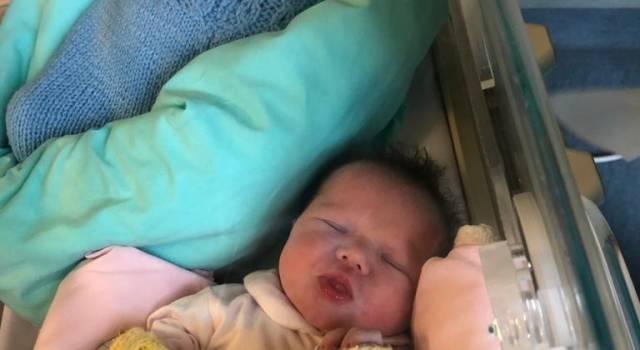 Record di nascite al Santa Chiara: tra i 16 neonati in 24 ore anche due gemelli viareggini