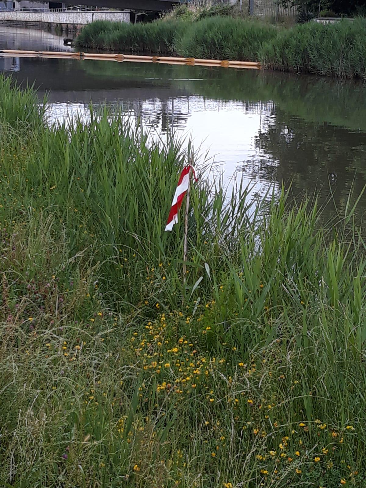 Ogni nido una bandierina rossa. Iniziano le attività di manutenzione dei corsi d'acqua