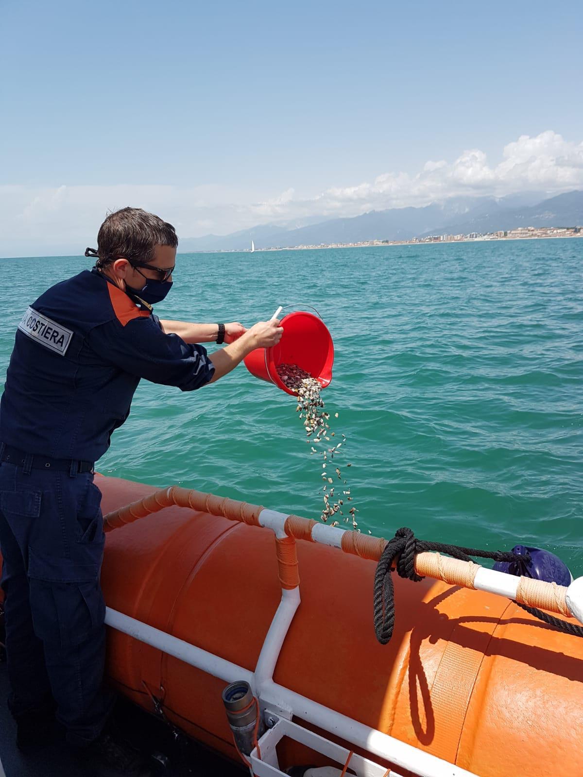 """Sequestrati 10 chili di arselle, un cittadino chiama la Capitaneria per segnalare pescatori """"abusivi"""""""