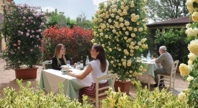 """Estate in fase 2, piante e fiori per rispettare la sicurezza in bar, ristoranti e spiagge: da Pistoia arrivano i """"distanziatori verdi"""""""