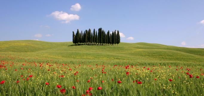 Estate in Toscana 2020, gli operatori si preparano in vista della campagna di promozione