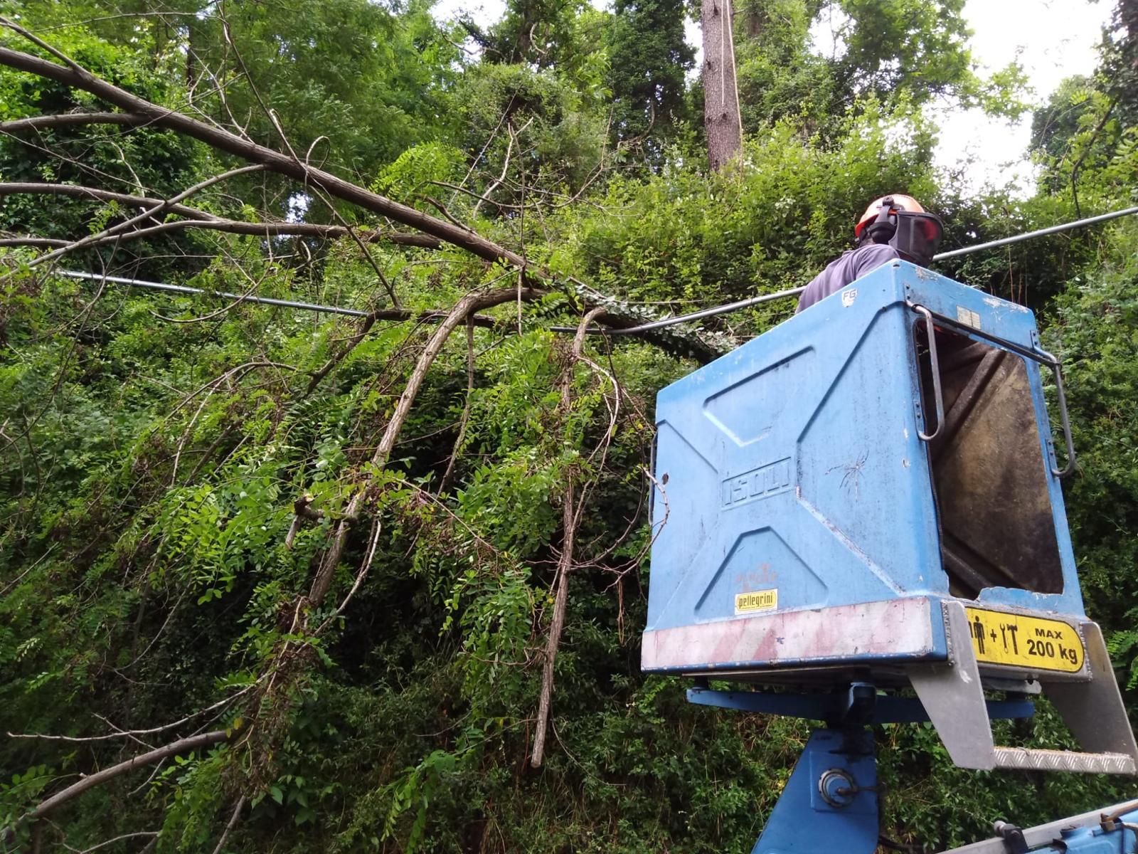 Maltempo, i danni a Camaiore