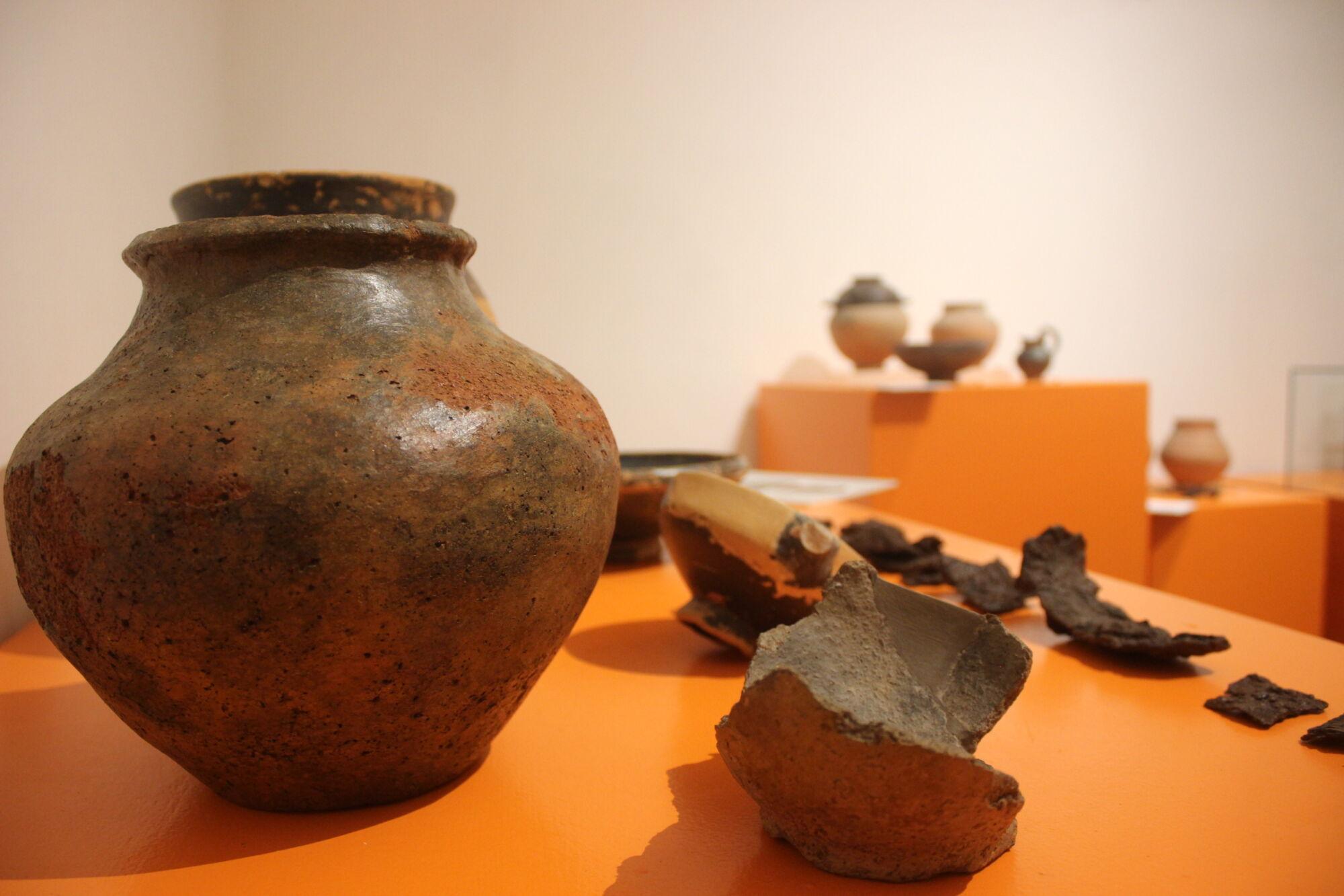 """Il Civico Museo Archeologico di Camaiore aderisce all'iniziativa """"Piccoli Musei Narranti"""""""