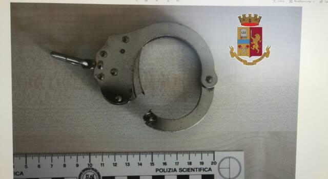 Doppio arresto per la volante di Viareggio