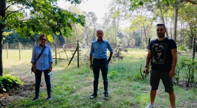 Progetti a 4 zampe: Sandro Bonaceto e i candidati di Più Democrazia per Viareggio e Torre del Lago in visita agli sgambatoi