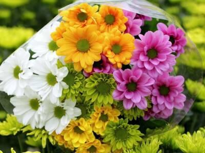Il Covid condiziona le celebrazioni per i defunti. L'appello: comprate fiori versiliesi