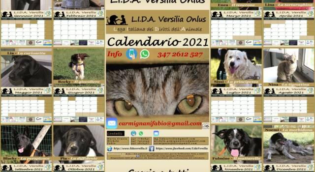 Ecco il calendario L.I.D.A. con i clic dei Fotoscattosi: il ricavato per assistere i 4 zampe in cerca di casa