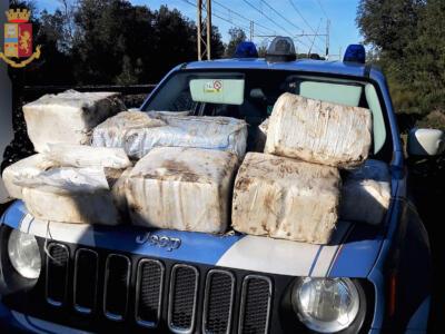 Blitz anti droga a Torre del Lago, il plauso dei consiglieri della Lega