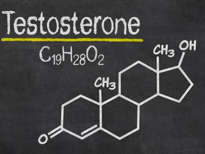 """Testosterone allunga la vita! (oltre che quell'altra """"cosa""""…)"""